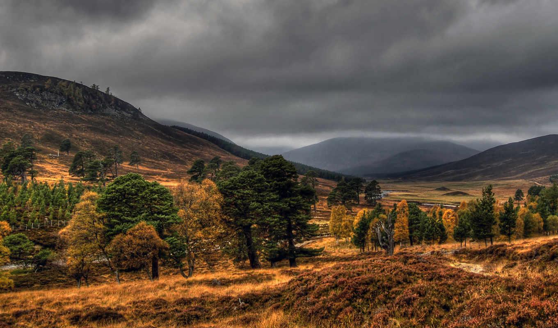 minus, лес, горная, местность, мешанный, share, картинку, ней, кнопкой, правой, scotland, мыши, cairngorms, выберите, contact, mevcut, değil, осень, mobile, create, пасмурная, upload, simply, help, ca