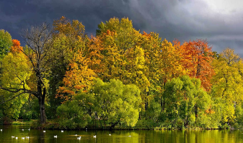 природа, trees, широкоформатные, лес, осень, landscape, река, озеро, природы,