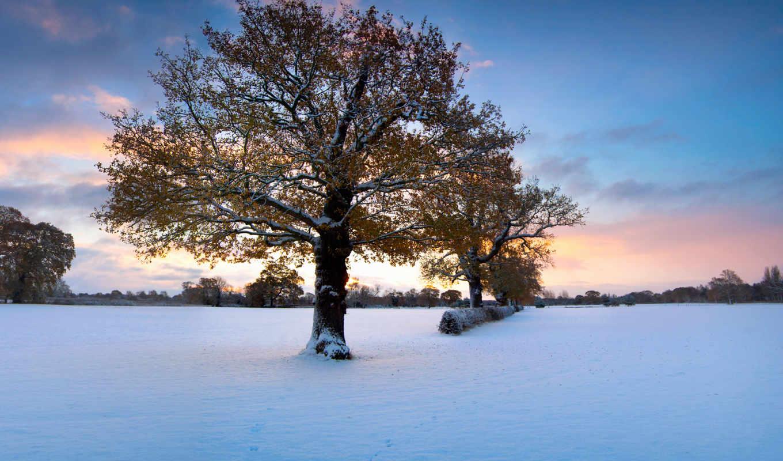 природа, пейзажи -, красавица, фона, природы, пейзажей, зимней, зимних, collector, поры,
