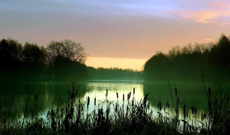morning, hintergrundbilder, lago, lake, best, scenery, early, trees, am, mist, frühen, reeds, morgen, schilf, bäume, nebel, landschaft, see, fondos, good, iphone, temprano, лес, download, дымка, árbol