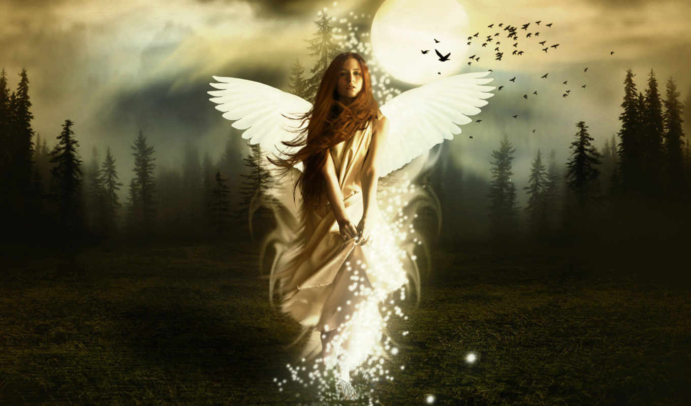 fantasy, angel, , forest, free,