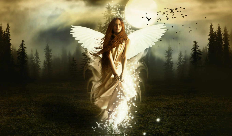 free, angel, fantasy, forest,