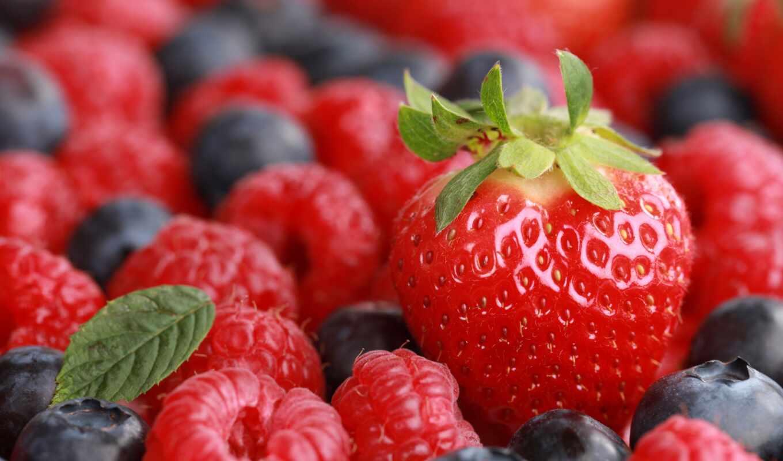 atlant, ягода, фото, stokovyi, royalty, иней, meal, монитор, frya, product