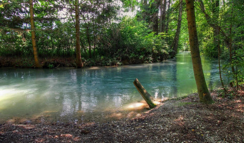 природа, река, лес, akarsu, güzel, manzarası, orman, duvar, картинка,