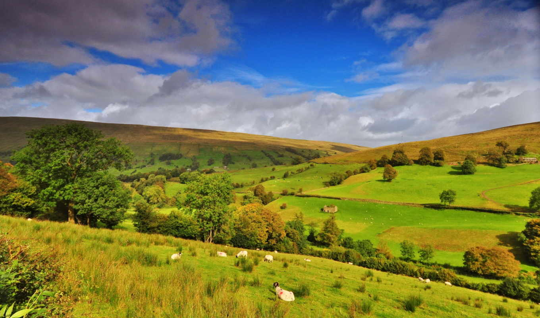 природа, англия, поля, landscape, небо,