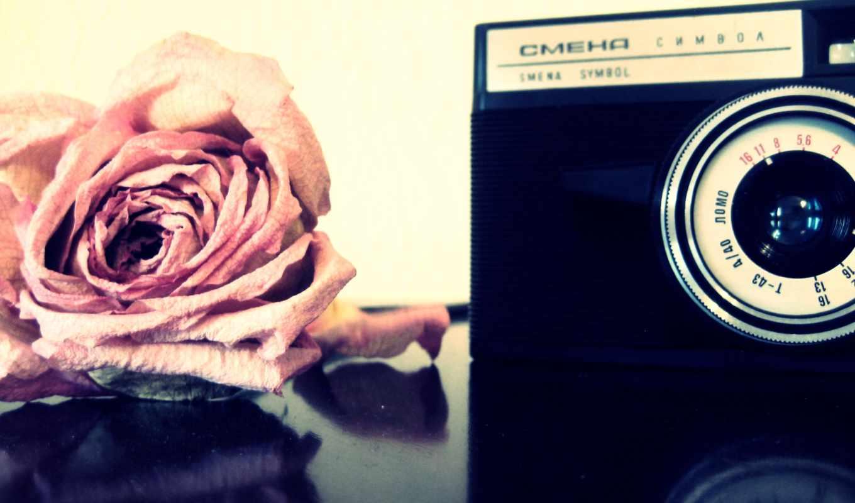 camera, old, lens, rose