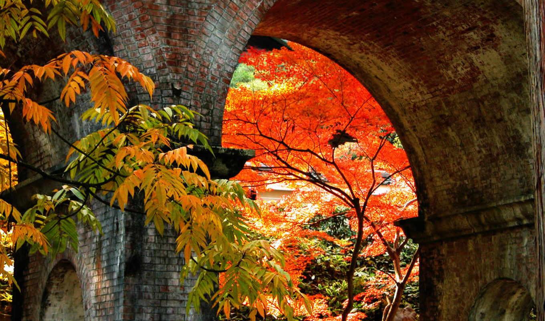японские, пейзажи -, осень, японии, япония, японской, landscape, japanese,