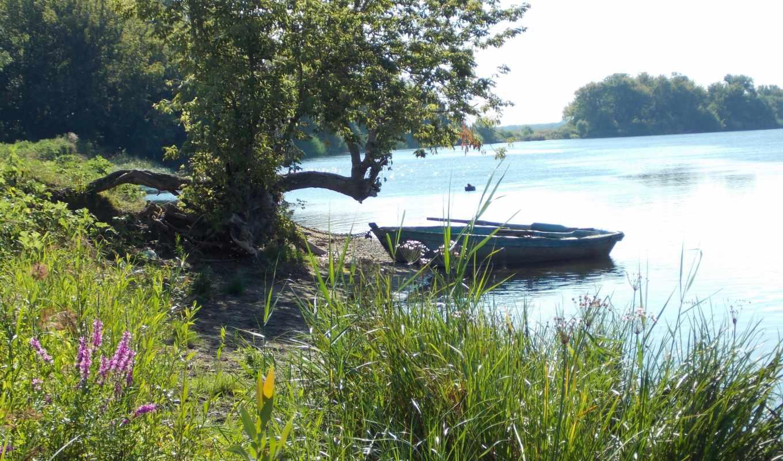 лодка, берег, река, дерево,