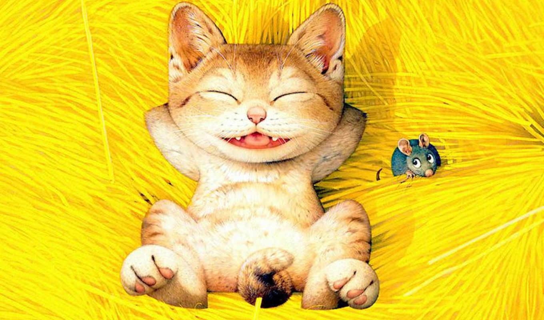funny, cats, но, everything, макото, muramatsu,