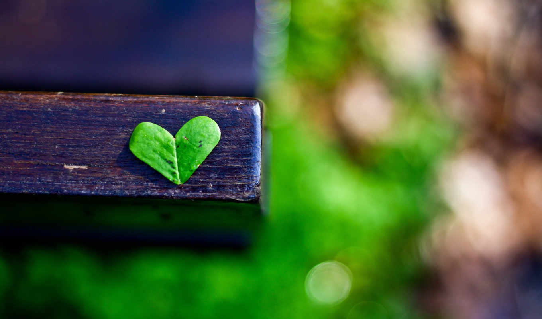 iphone, ipod, зелёный, love,