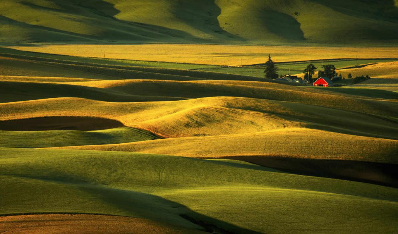 , поля, холмы, зелень,