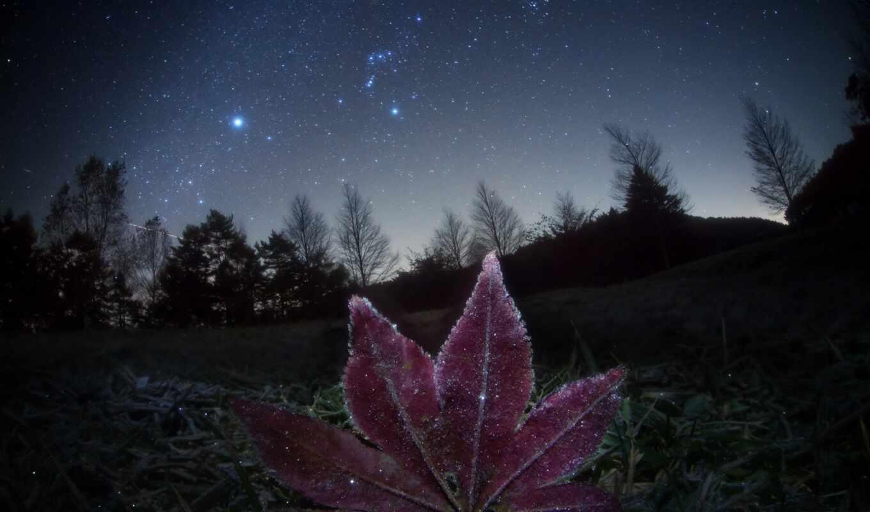 star, orion, созвездие, небо