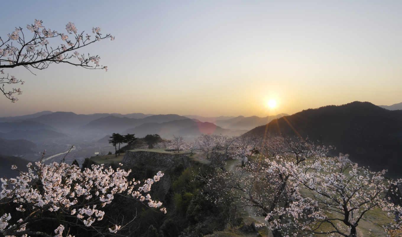 япония, Сакура, вид, закат, рассвет,