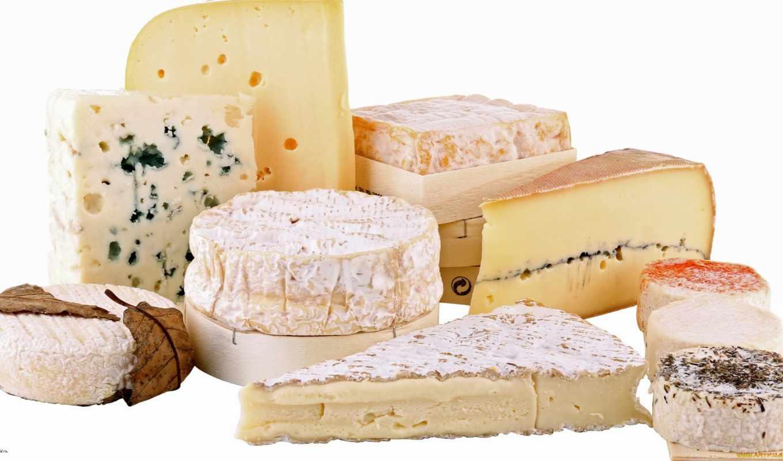 produits, laitiers, les, sur, des, fond, blanc,