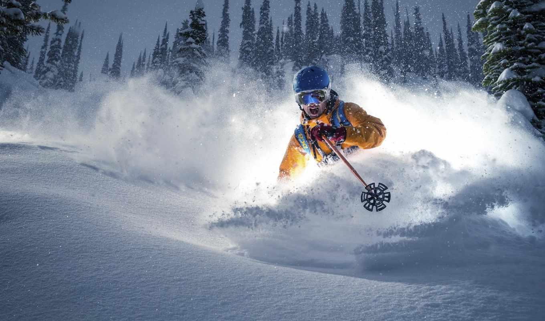 лыжник, горы, лыжах, лесу,