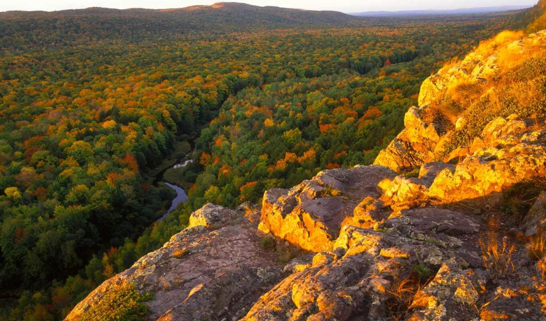 вид, лес, первую, осень, дек, июня, природа, леса, цветы,