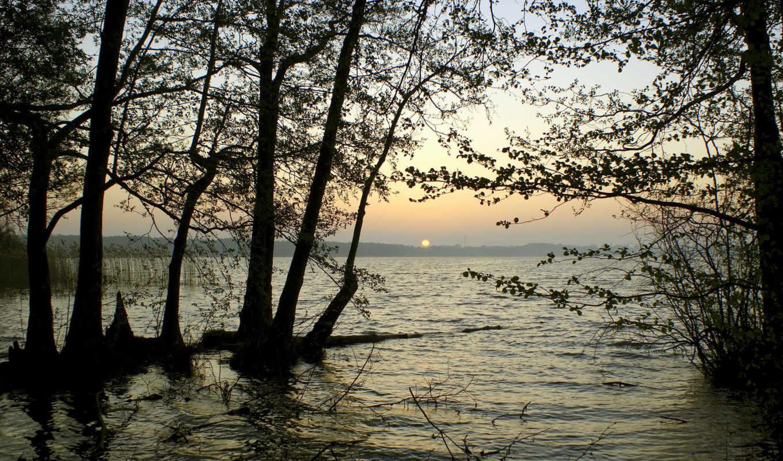 reservoir, горизонт, water, природа, деревя, закат, картинка, reki, sun, птица,