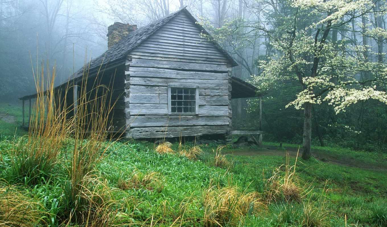 lodge, лесу, свой, весна, совершенно,