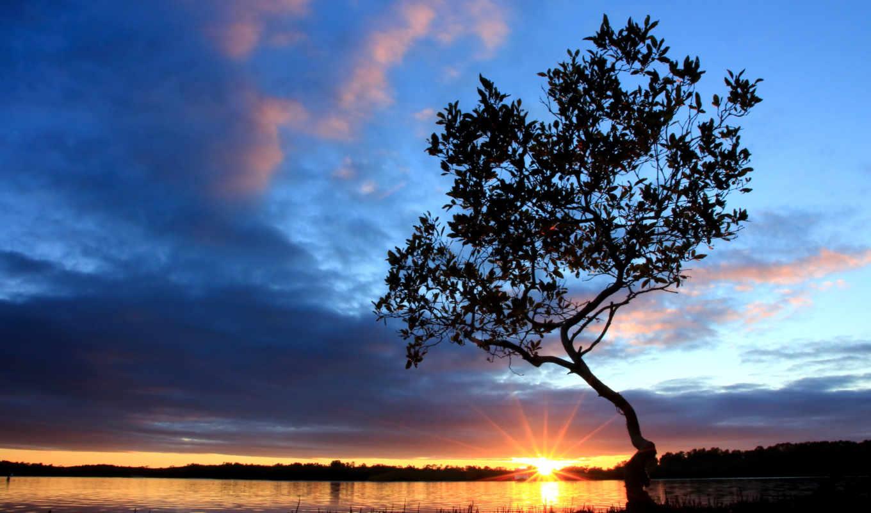 небо, облака, утро, река, sun, берег, восход,