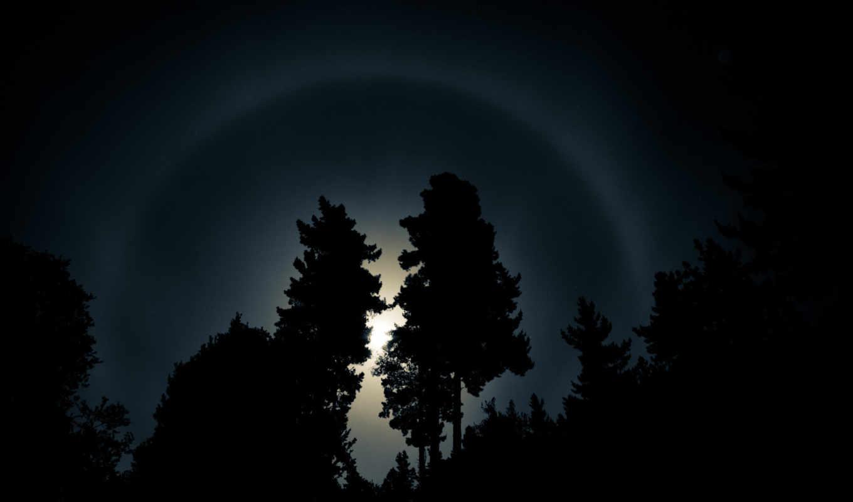 halo, iris, деревья, arco, sun, desktop, moon, ночь, minus, лучи, oscuridad, дерево, para, небо, свет, пейзажи,