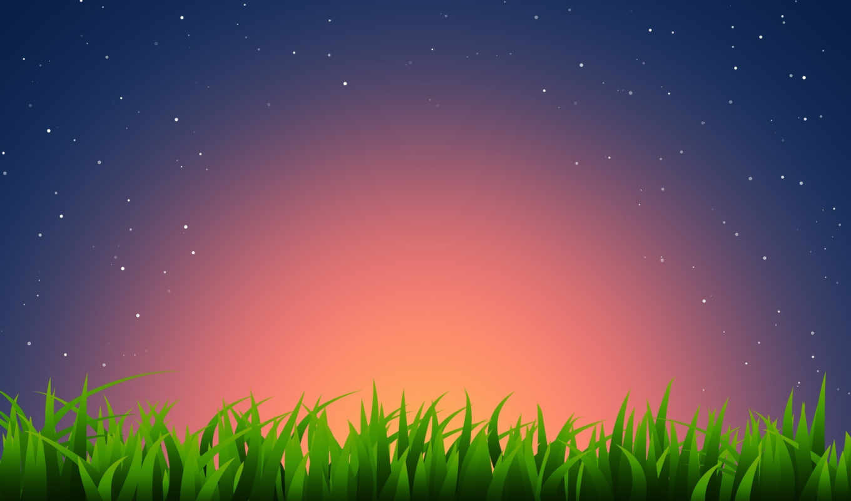 вектор, свет, трава, горизонт, звезды,