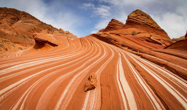 coyote, бют, скалы, каньон, небо, oblaka, текстуры, текстура,