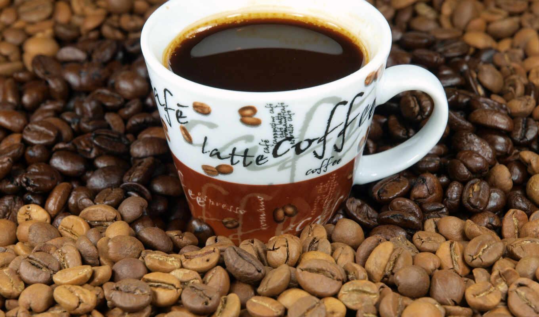 coffee, svetlogorsk, карта, fact, отзыв, ut, работа, доставка, калинин, chas, ryad