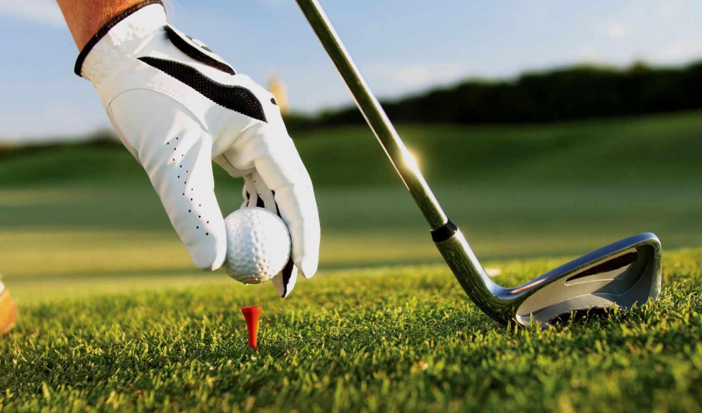 golf, free, game,