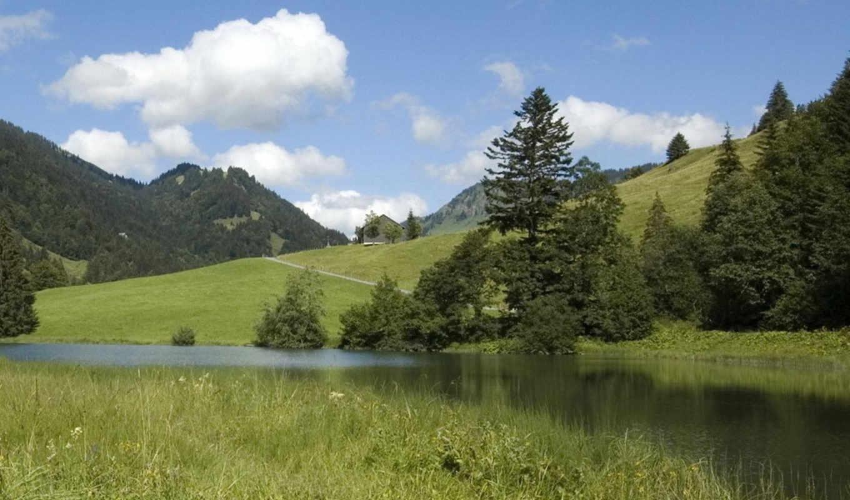 природа, best, скамейка, зелёный, небо,