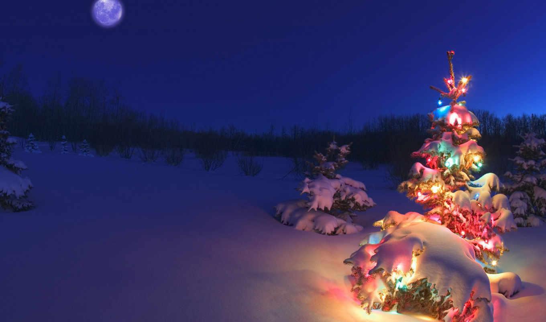 , елки, снег, новогодний, небо, луна