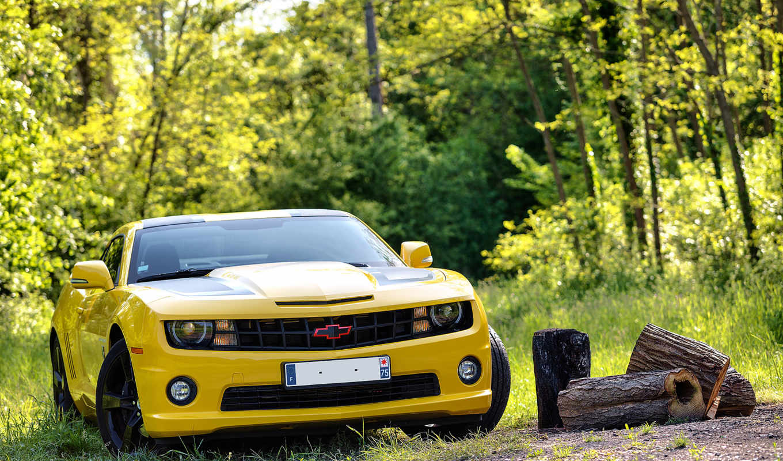 camaro, chevrolet, yellow, камаро, transformers,