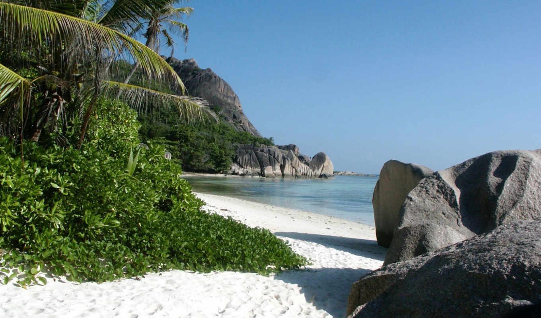 пляж, тропический, море, песок, камни,