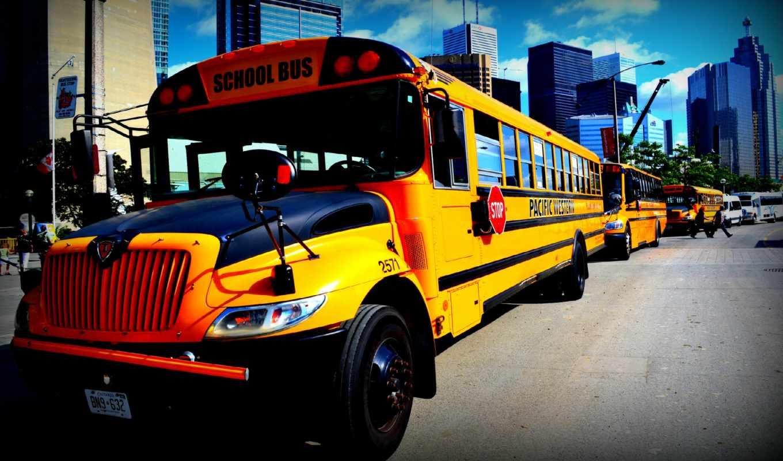 school, bus, cover, desktop, facebook,
