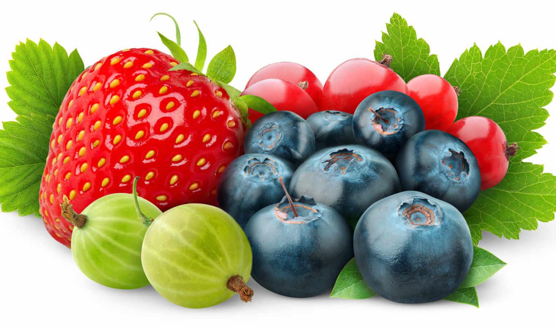 ягоды, белом, fone, фрукты, черника, ягода,