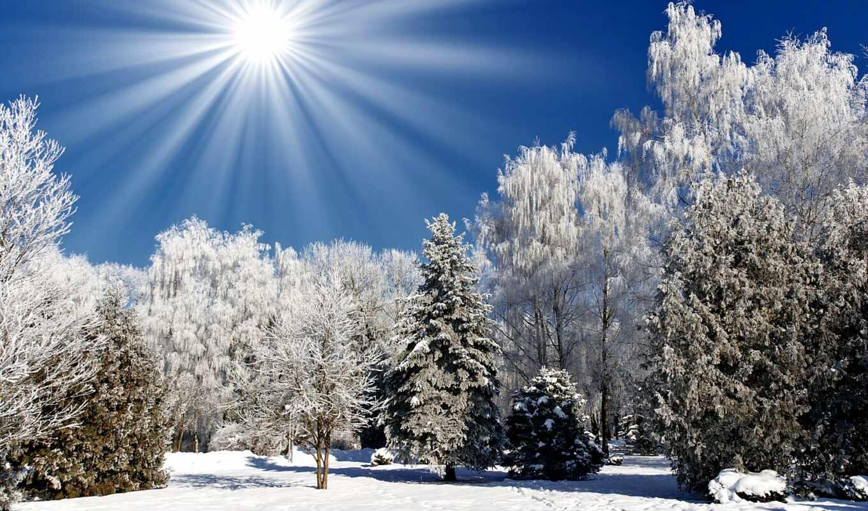 winter, природа, времена, года, кб,