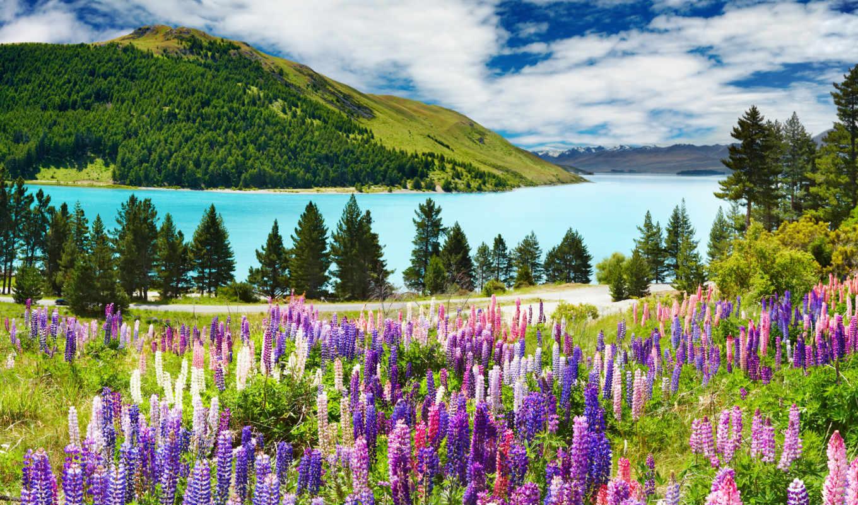 озеро, природа, лес, гора, landscape, one, осень, природы, луг, горы,