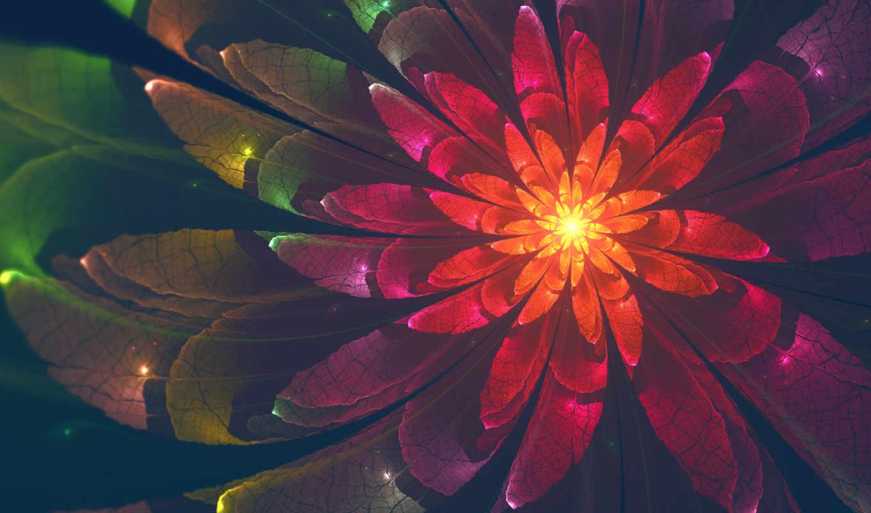 desktop, цветы, high, resolutions, качество, abstract,