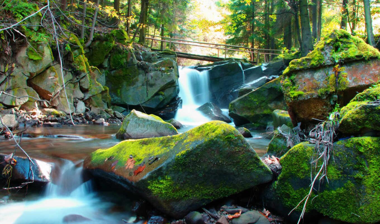 река, landscape, мох, камень, natural, твой, оригинал, мост, добавить