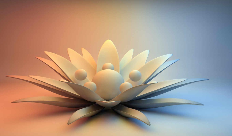 цветы, камень, абстракция, данилы, мастера,