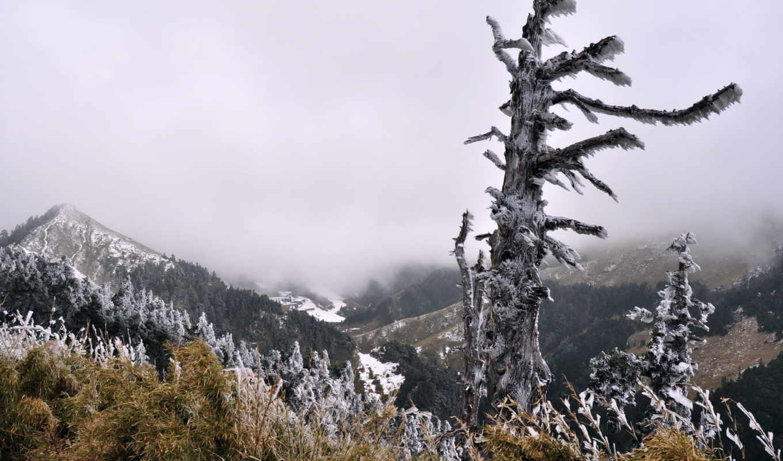 категория, совершенно, природа, attractions, you, февр, туман, gackt, горы,