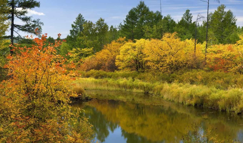 осень, природа, переход, река, небо, осени, лета, осенние,