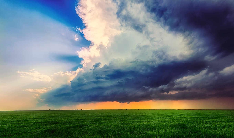 небо, трава,