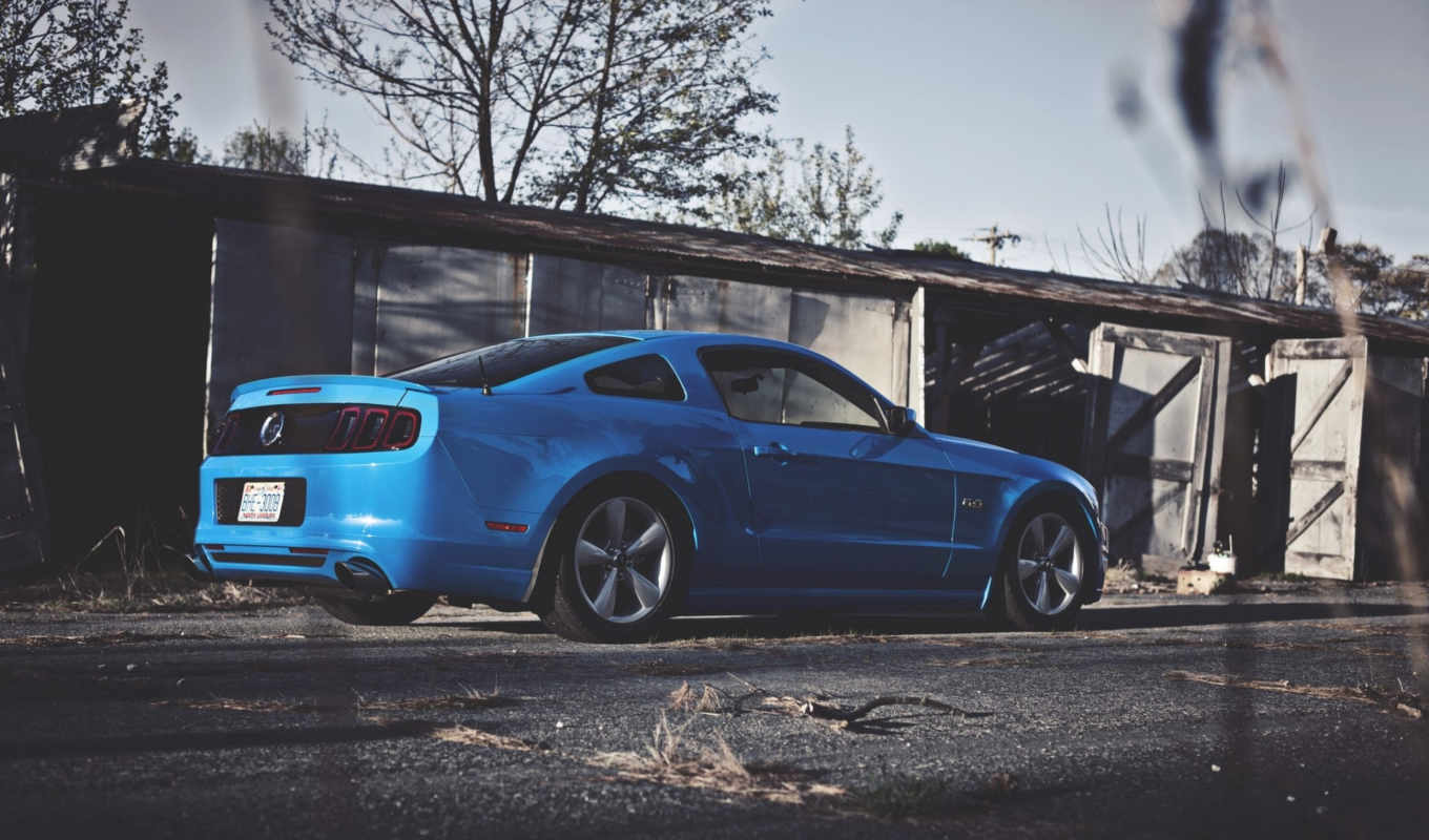 красивые, заставки, daily, car, ford, mustang, muscle,