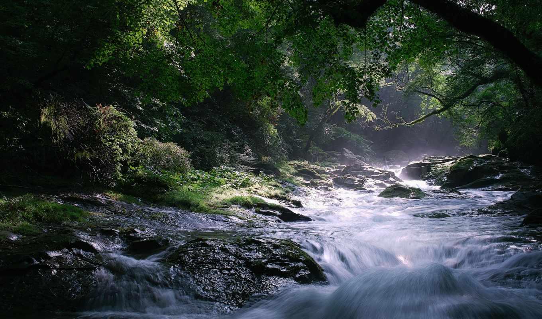 река, лес, скалы, природа, водопад, поток, деревья,