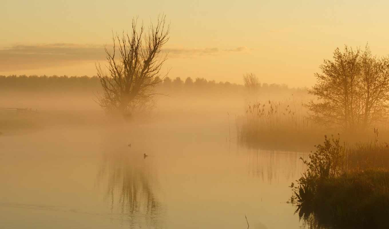 foggy, утро, desktop, озеро,