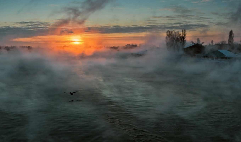 туман, река, утро, sun, птица,