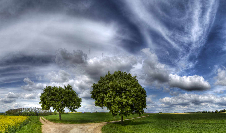 road, wallpaper, divided, download, efendisi, iki, широкоформатные, деревья,