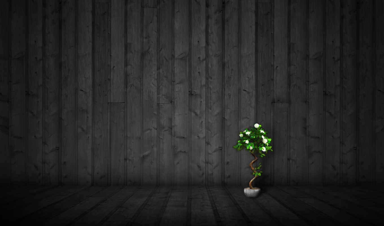 dark, wood, стена, минимализм, ipad, стиль, вазон, цветы,