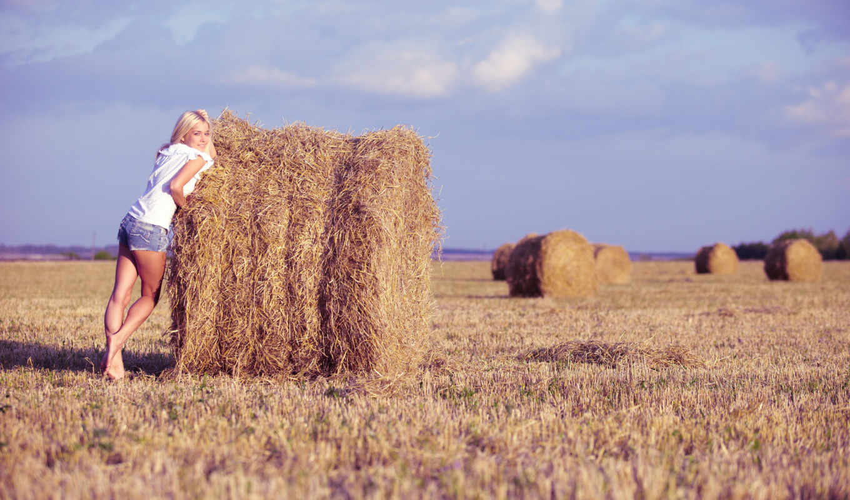 девушка, поле, sena, сено, небо, blonde, стога, ножки, разных,