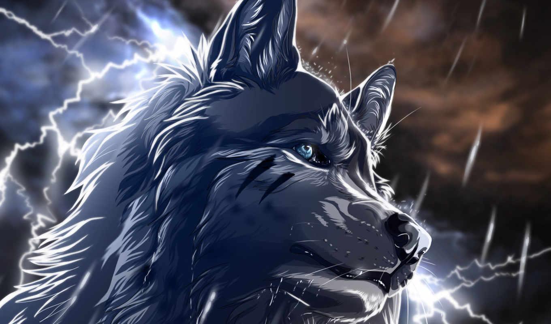 волк, art, wolfroad,